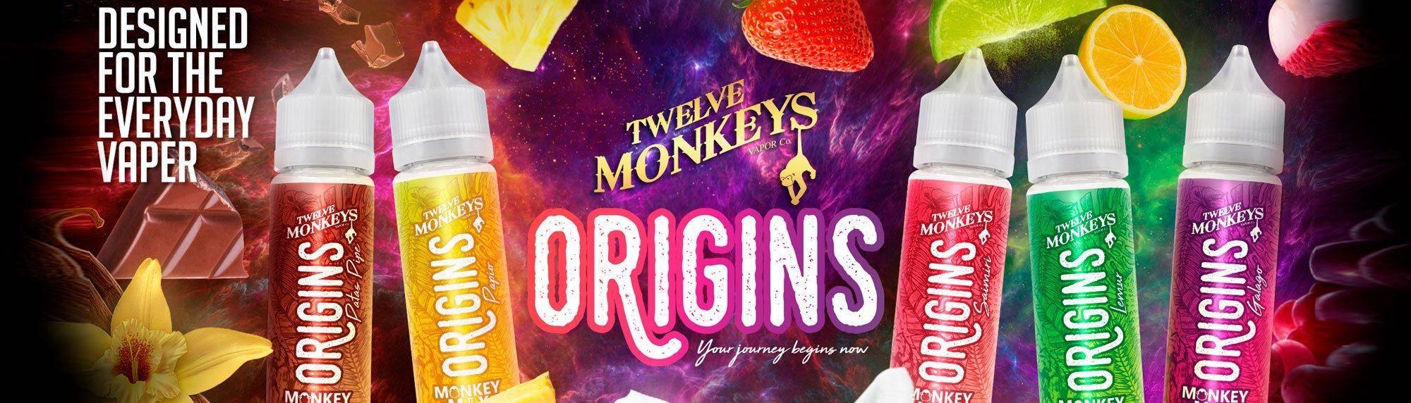 Origins Twelve Monkeys